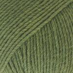 11 Verde bosque
